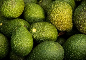 using avocados for beauty